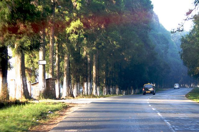 Shillong to Cherrapunjee, best road trips in India