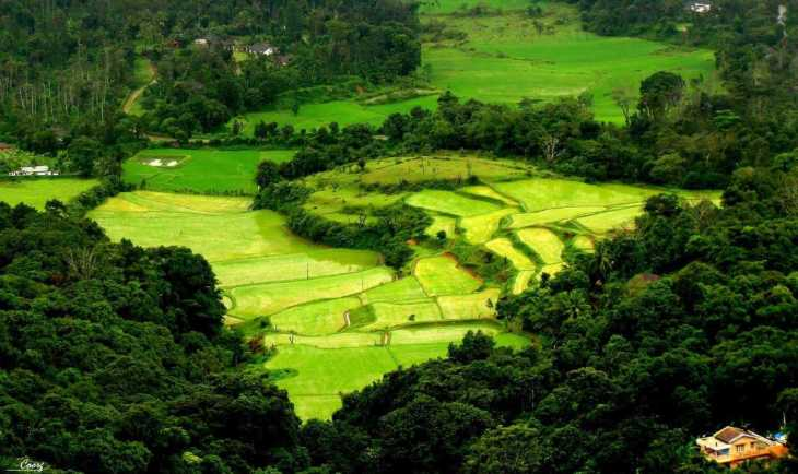 Image result for Coorg