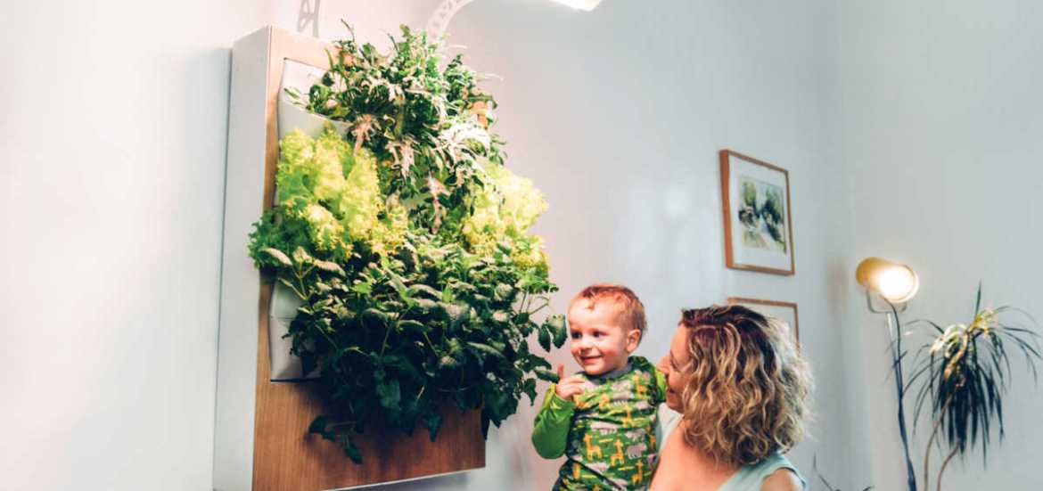 Indoor-Farming