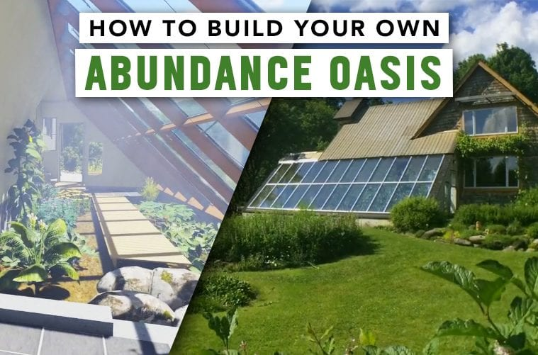 How to attach a year-round greenhouse to your own home