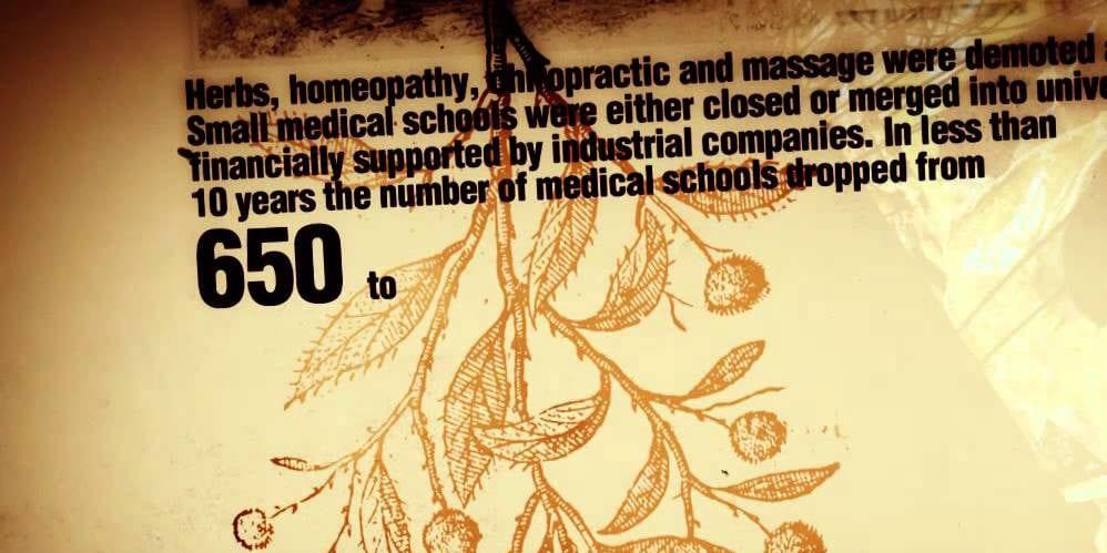 Flexner kills alternative medicine schools (video)