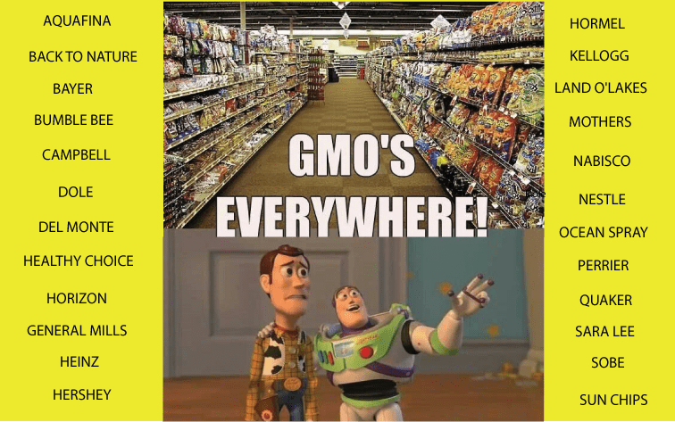 How GMOs quietly became a staple in our society by the corporate food industry