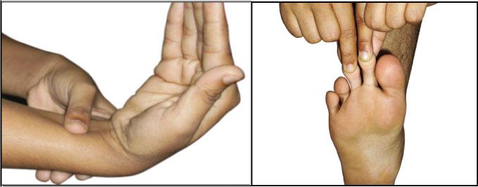 acupressure Reversing Disease with AcuEntrainment and AcuPressure