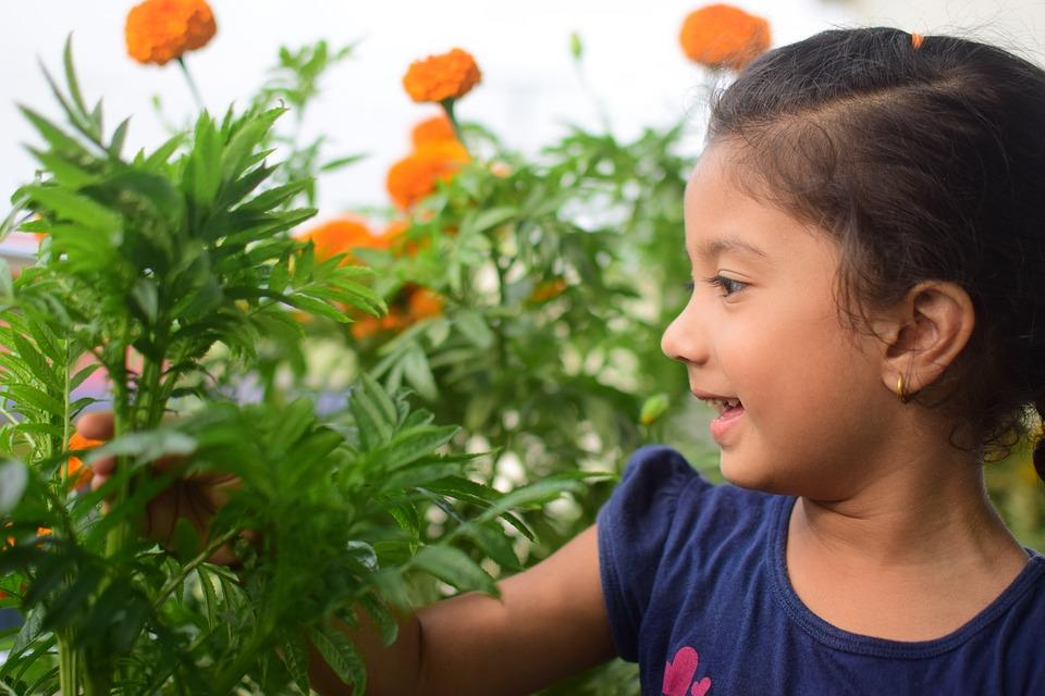 Vegetable consumption increases when children learn to garden!