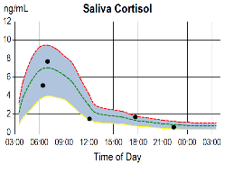 saliva cortisol 2 Adrenal Stress Test