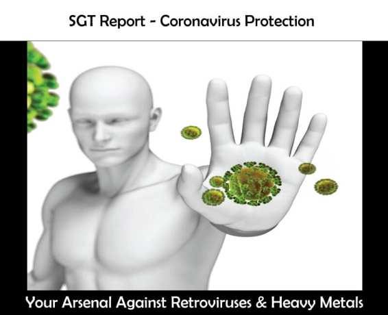 coronavirus SGT Report Covid 19 Corona Virus & Free Energy Quest