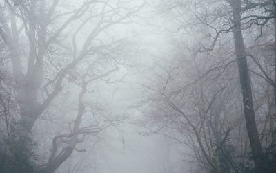 How to deal with brain fog – Clear your head.