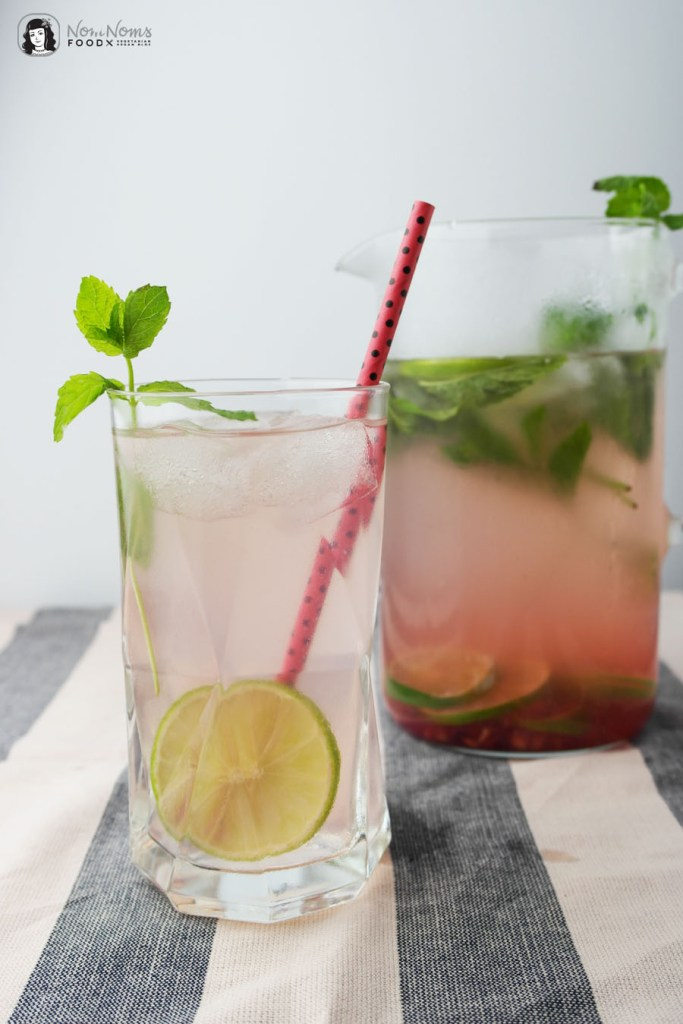 Erfrsichendes Infused Water LC