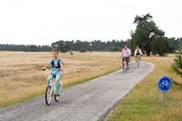 hoge veluwe national park by bke200 - Hoge Veluwe National Park by bike