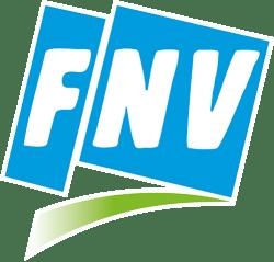 FNV-LOGO-FLASH-CMY
