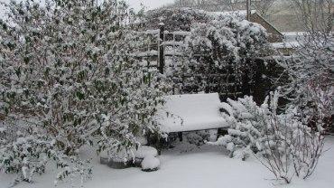 Top 10 Tips to Help Your Garden Survive Winter