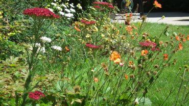 A user friendly family garden