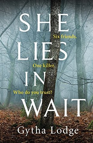 Blog Tour: She Lies in Wait by Gytha Lodge