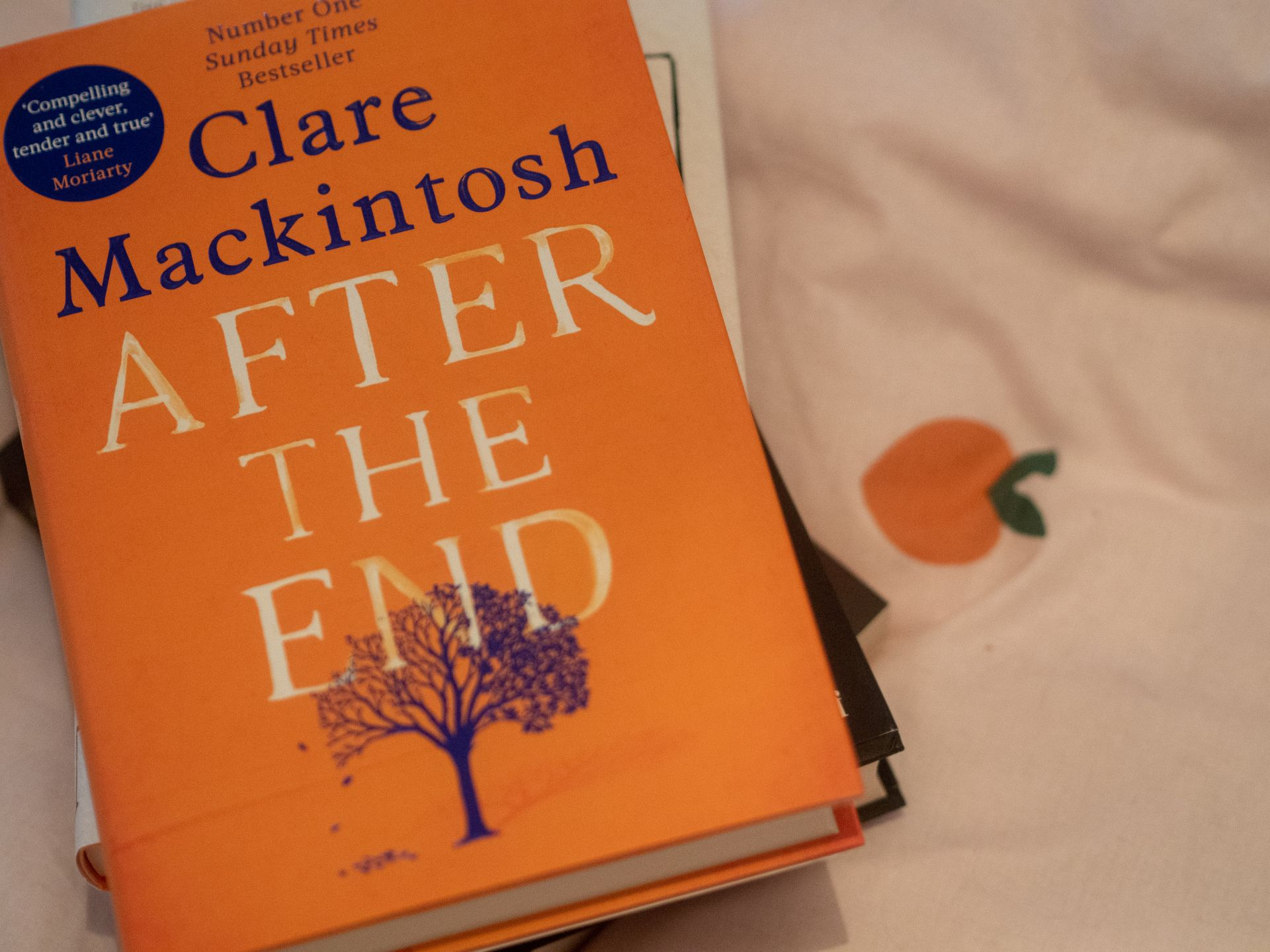 After the End by Clare Mackintosh | Hollie in Wanderlust | September 2019 Reading List