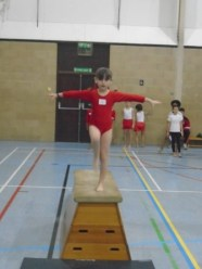 Gymnastics (16)