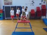 Y3 gymnastics (2)