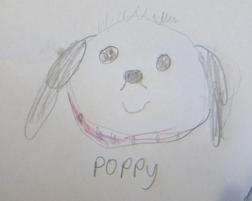 Poppy art (1)