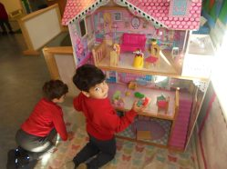 Nursery settling (8)