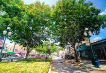 Downtown hollywood florida lowres