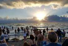 Celebrate the 16th annual groundhog day on hollywood beach sun., feb. 2, 2020