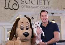 Emmy award-winning clinton kelly to chair 30th annual vca walk for the animals set for march 7