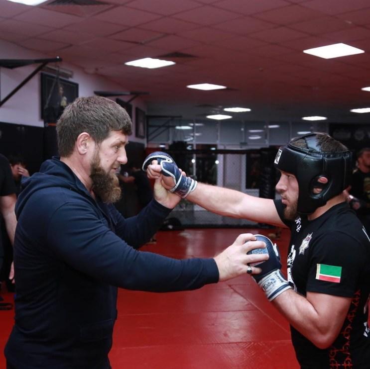 Kadyrov Bibulatov boxing