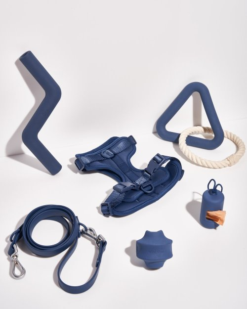 The Wild One Harness Walk and Play Dog Set