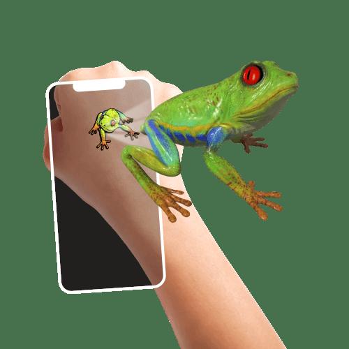 holotoyz-tatouage-3d-animaux-amusants