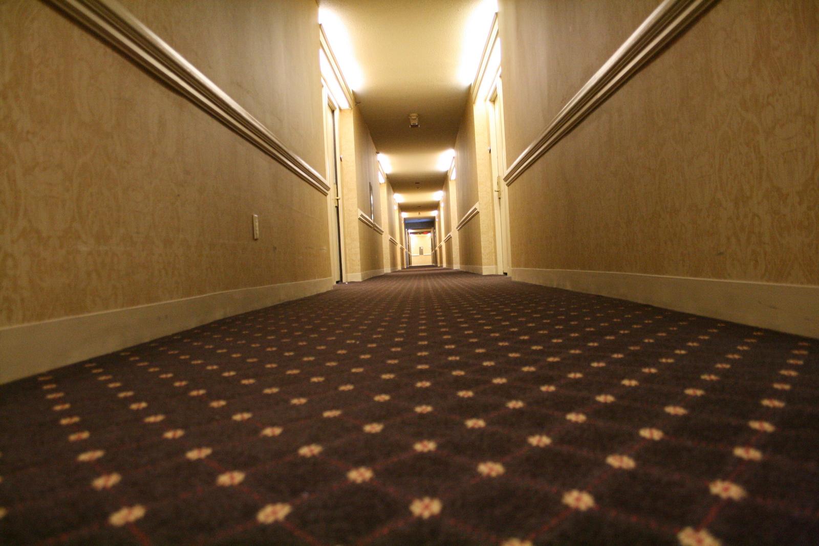 Hotel Carpet 2 Image 500x333 Pixels