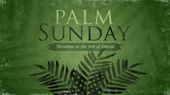 palm-sunday_wide_t_nv