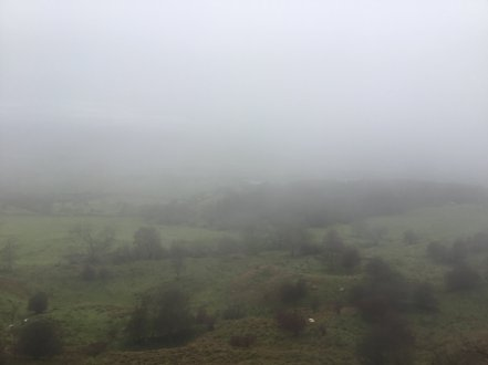 misty bredon