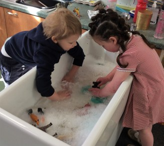 Washing animals