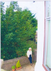 ScotHedge is campaigning for people whose lives have been blighted by oppressively high hedges, trees and bushes across Scotland. These images have been collated by Scothedge members and are reproduced here by Holyrood Partnership PR in Scotland as part of an awareness-raising campaign on behalf of the campaign group.