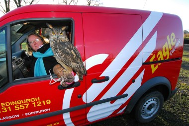 Ollie the Eagle Owl - Eagle couriers