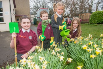 A photo of 3 young girls and a young boy posing in front of daffodils with gardening equipment for Photography PR
