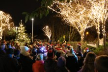 Property PR image of Balerno residents gathering to attend the village's annual Christmas lights switch on