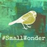 #smallwonder God's wonders