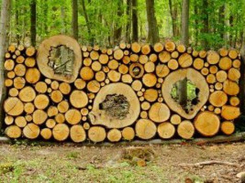 gartengestaltung mit baumstämmen kreative gestaltung des heimischen gartens mit brennholz