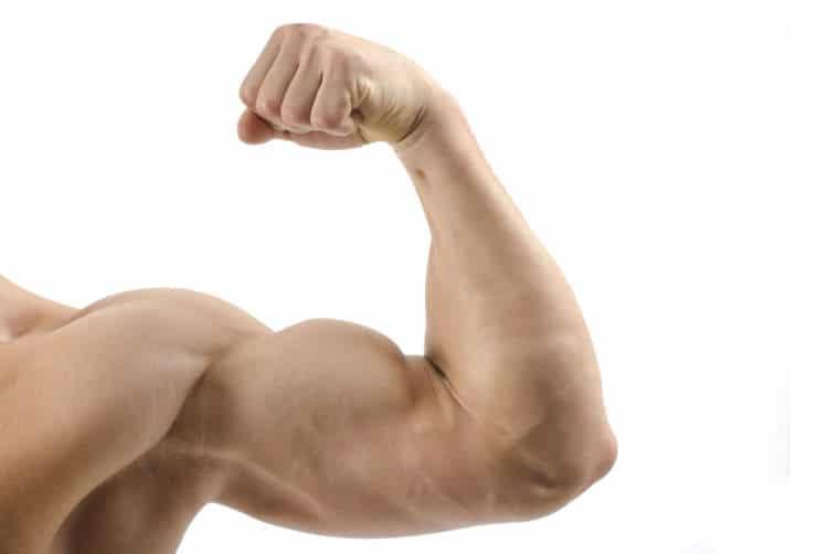 alimentos con mas hormonas masculinas