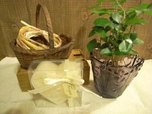 植木鉢を選ぶ ガラス鉢
