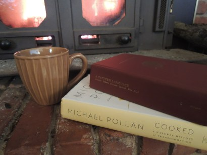 Patterns and Pollan, tea, and a fireplace...Mmmm