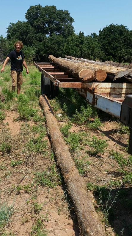 One man job hoisting logs onto trailer.