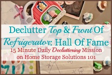 declutter top and front of refrigerator mission