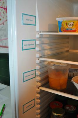 refrigerator organization storage ideas