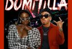 Mayorkun Ft. Lisa Yaro – Domitilla