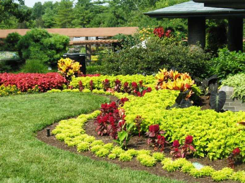 gardering-&-landscaping-design-ideas