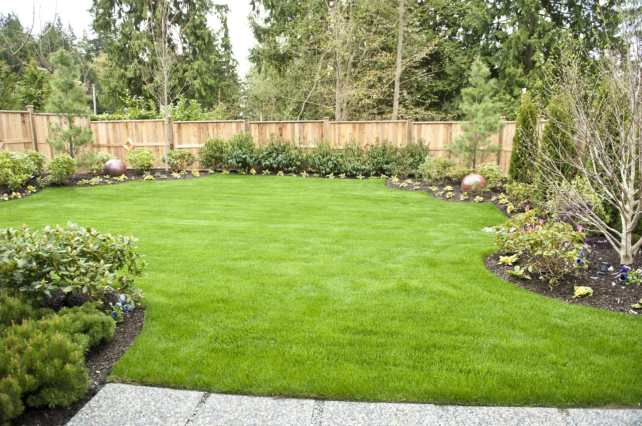 ideal-gardering-landscaping-gallery-3