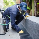 The advantages of using approved pest control services