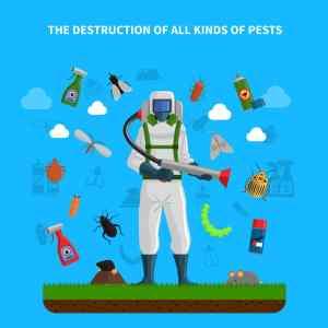 pest-control-methods