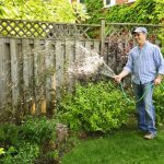 Water Saving Tips for Lawn Care